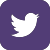 IP_twitter